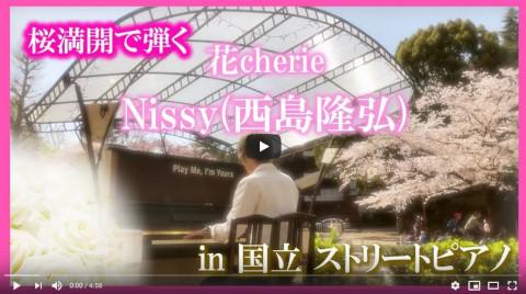 桜満開のストリートピアノで Nissy(西島隆弘) 「花cherie」弾いてみた