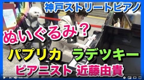 【ストリートピアノ】ぬいぐるみ犬!JR神戸駅にて
