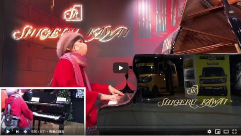 カーペンターズメドレー(浜松駅ストリートピアノ)