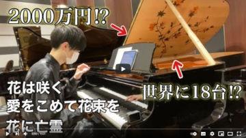 世界に18台しかないお花のピアノでお花の曲を弾いてみたらめちゃめちゃ映えた