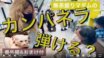 【ドキドキ駅ピアノ】(おまけ付)待った梨(ナシ)のカンパネラ/番外編・猫の贈り物jupitar/ジブリメドレーも。